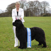Suzanne Blake and Ch. Sandbears Cappachino with his Best in Show sash