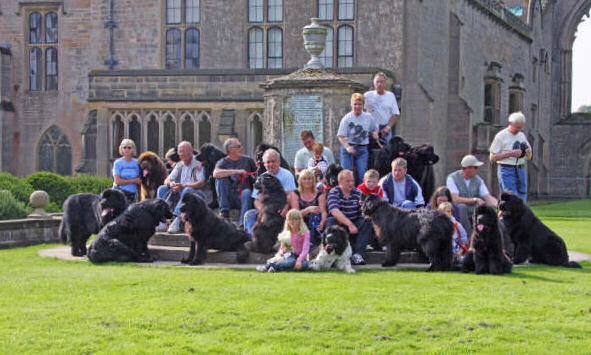 Newfies at Newstead Abbey