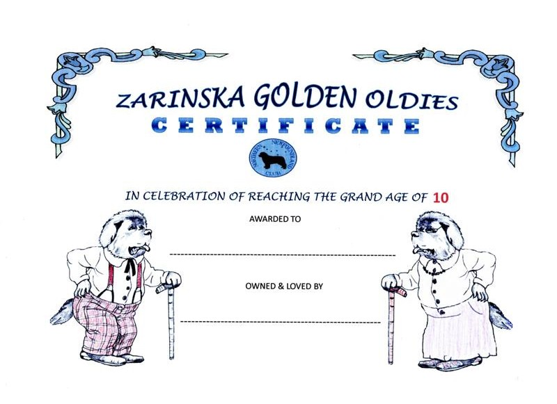 Zarinska Golden Oldies Certificate